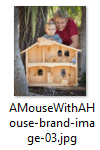 Download AMouseWithAHouse brand image 3
