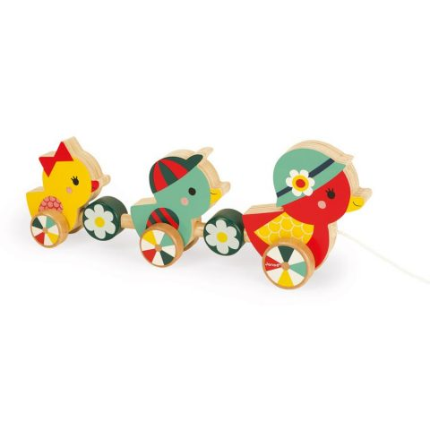 duck toys