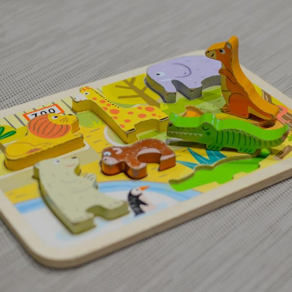 Wooden puzzles for toddlers and kids