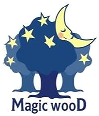 Magic Wood wooden toys are handmade in Poland - Europe using sustainable timbers and natural plant dyes.